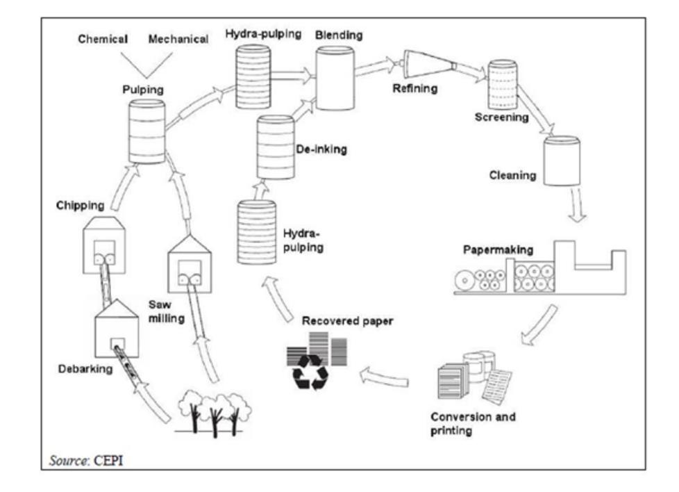 Produzione della carta